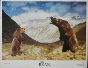 The Bear 1988 Lobby Card aka L'Ours