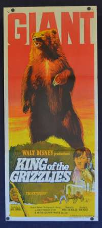 King Of The Grizzlies Daybill Poster Original 1970 Disney John Yesno Chris Wiggins